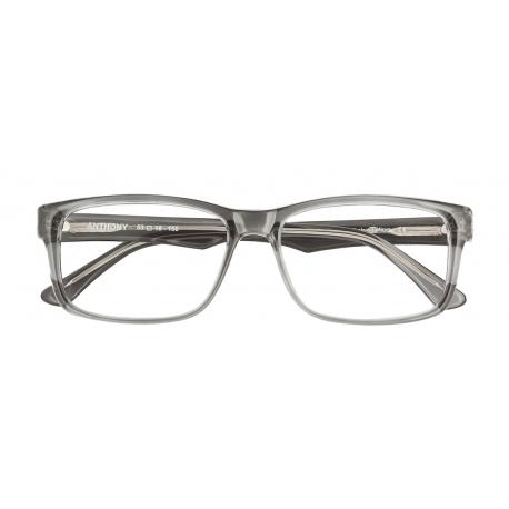 Anthony col. 1000 - front: szary transparentny, zausznik: szary transparentny.